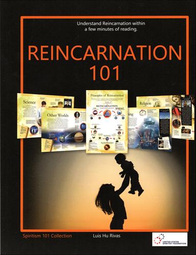 Reincarnation 101
